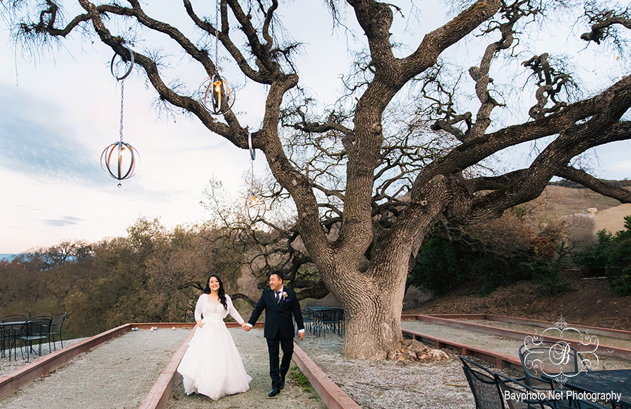 HD_Willow_Heights_Mansion_wedding_500s