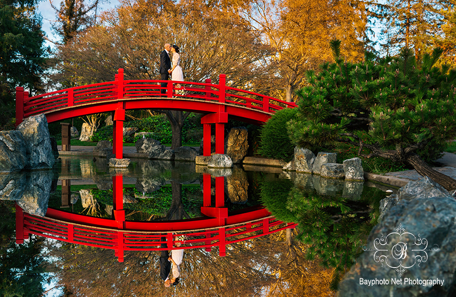 VA_Japanese_Friendship_Garden_wedding_262s