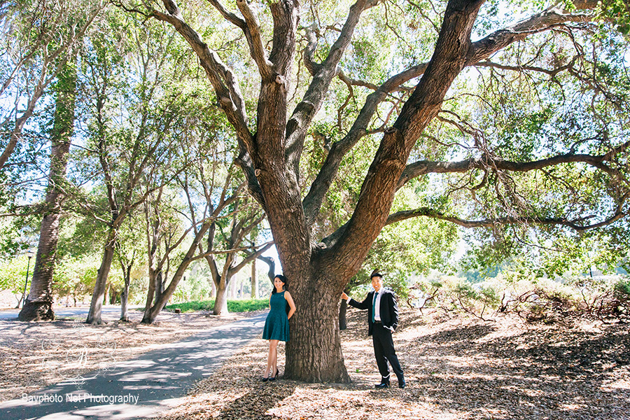 AA_Stanford_University_Engagement_022s